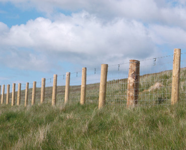 stock net fencing